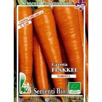 Foto de Semillas Ecológicas de Zanahoria Flakkee- 7000 Semillas