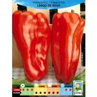 Foto de Pimiento Largo de REUS Ecologico. 0,300 Gr. 75 Semillas Bio Ecológicas.