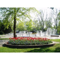 Proyectos de jardiner a y paisajismo m laga servicios de for Proyecto de jardineria