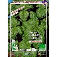 Foto de Semillas Ecologicas de Albahaca Hoja de Lechuga - 50 Gr