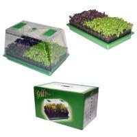 Foto de Mini Invernadero Greenhouse