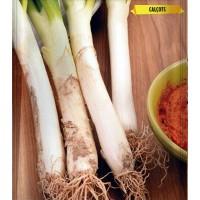 Foto de Semillas de Calçots - Cebolla Blanca Tardia de Lérida. 5 Gr