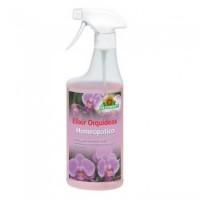 Foto de Elixir de Orquídeas Homeopático