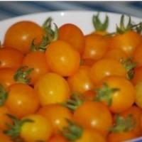 Foto de Tomate Cocktail Clementine. Enano. 0,085 GR.