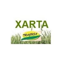 Foto de Xarta, 1L (Herbicida Diflufenican)