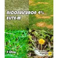 Foto de Elite-M - Nicosulfuron 4% (5 Litros)