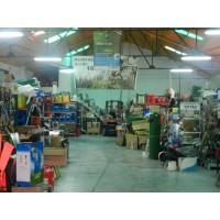 Foto de Cortabordes Electrico 250W IVA y Portes INCL