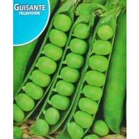 Foto de Guisante Television. Medio Enrame. Ideal para Congelación. 250 Gr/1250 Semillas