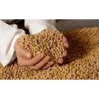 Foto de Granos, Cereales y Otros