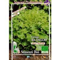 Foto de Semillas Ecológicas de Lechuga Salad Bolw 250 Gr