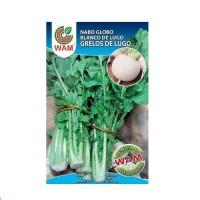Foto de Semillas Nabo Globo Blanco de Lugo (Grelos de Lugo) Paquete 250 G