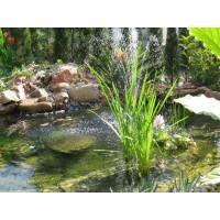 construcci n y mantenimiento de estanques servicios de On mantenimiento de estanques