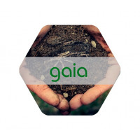 Foto de Gaia, Ácidos Húmicos Procedentes de Leonardita 20L