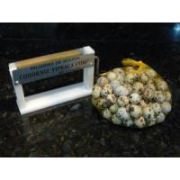 Foto de Peeler Machine Quail Eggs Vipraca