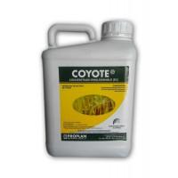 Foto de Coyote - Clodinafop-Propargil 9,5 % (5 Litros)