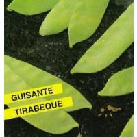 Foto de Semillas Guisante Tirabeque 250Gr (Bisaltos)