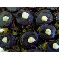 Foto de Baklava Chocolate y Avellanas 1Kg
