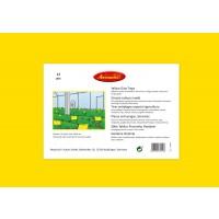 Foto de Trampa Adhesiva para Insectos No Tóxica Aeroxon 40 X 25cm 12 Unidades