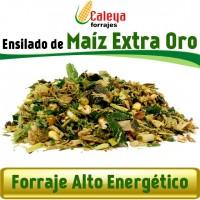 Foto de Ensilado de Maíz Extra ORO