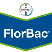 Foto de Florbac, Insecticida Bayer