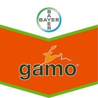 Foto de Gamo, Herbicida Post Emergencia Bayer