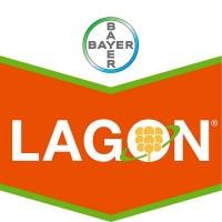 Foto de Lagon, Herbicida Pre Emergencia Bayer