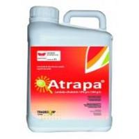 Foto de Atrapa, Insecticida Tradecorp