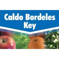 Foto de Caldo Bordelés Key, Fungicida Key