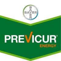 Foto de Previcur Energy, Fungicida Sistémico Bayer