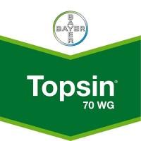 Foto de Topsin 70 WG, Fungicida Bayer