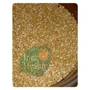 Foto de Quinoa Grain - Chenopodium Quinoa