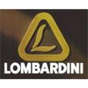 Foto de Repuestos y Recambio Motores Lombardini Diesel Montados en Motocultores y Tractores Pascuali, Agria