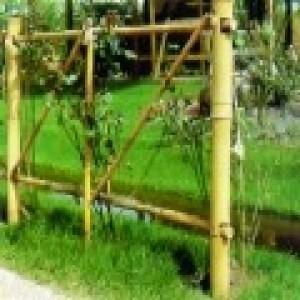 Foto de Celosiasy Cañas de Bambú para Decoración