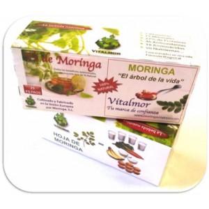 Foto de Infusiones de Té de Moringa Ecologica Vitalmor