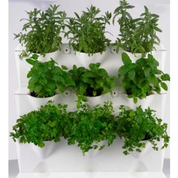 Jardin vertical minigarden blanco mesas y m dulos de - Jardin vertical interior ikea rouen ...