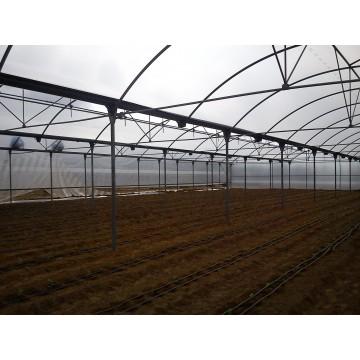 Invernaderos de segunda mano invernaderos y viveros for Construccion de viveros e invernaderos