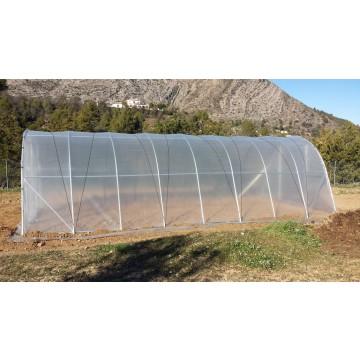 Invernadero tunel huerta y jardin 4x8 invernaderos y for Invernaderos de jardin