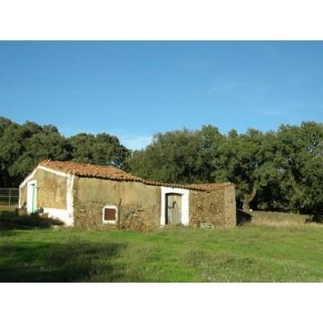 Terreno con casa de campo en la sierra sur de extremadura fincas agr colas y r sticas - Casa con terreno ...