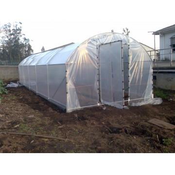 Invernadero tipo familiar 21 m2 3 5x6m largo hierro for Vivero estructura