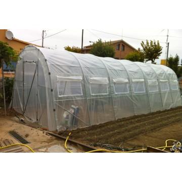 Invernadero para huerto y plantas x 12m for Plantas para invernadero