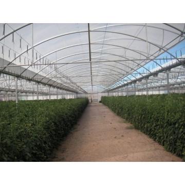Fabricante de invernaderos nuevos y segunda mano invernaderos y viveros 3036914 agroterra Estructuras invernaderos segunda mano