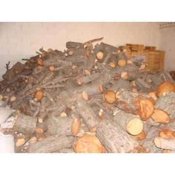 Tocones de pino madera 3055718 agroterra - Tocones de madera ...