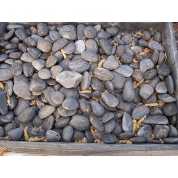 Piedra pulida de rio crema bolsa 20 kg arena y piedras for Bolsa de piedra para jardin