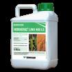 Foto de Herbicruz LINO 400 LS, Herbicida Hormonal Kenogard