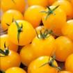 Foto de Tomate Golden Cherry Ecológico 0,5g