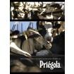 Foto de Vaca Lechera Priégola Holstein Frisona Alto Valor Genético