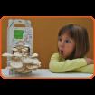 Foto de Kit Infantil de Cultivo de Setas