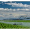 Foto de Agrares K Foliar (Potasio para Aplicación Foliar)