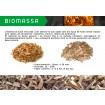 Foto de Astilla de Madera para Biomasa