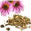 Foto de Equinacea Flor. Ecológica. 1 Kgr. Mejor Antibiótico Natural. Herboristeria.